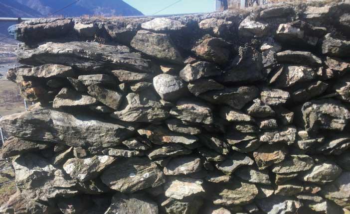 シストと呼ばれる黒い岩